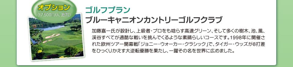 【日程】4日目:オプションゴルフプラン